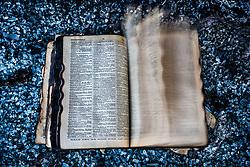 Burned dictionary in glass and rubble, Salton Sea Beach, California