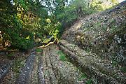 Etruscan Necropolis, Ceverteri, Italy.