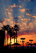 Israel, Tel Aviv, Mediterranean sun set with Palm trees