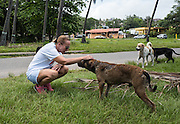 Chrissy Beckles meets a pack of stray dogs on Guayanes Beach, Puerto Rico.