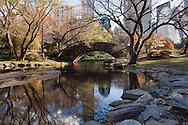 Reflection of Gapstow Bridge in Pond
