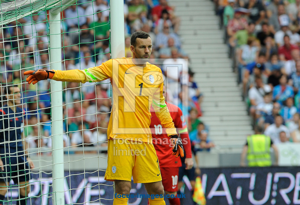Samir Handanovic of Slovenia during the UEFA Euro 2016 Qualifying match at Stozice Stadium, Ljubljana<br /> Picture by Stefano Gnech/Focus Images Ltd +39 333 1641678<br /> 14/06/2015