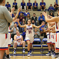 Women's Basketball: Concordia University (Wisconsin) Falcons vs. Concordia University Chicago Cougars