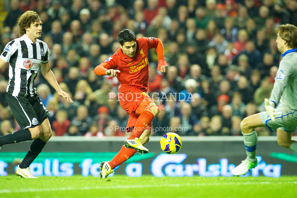 LIVERPOOL, ENGLAND - Sunday, November 4, 2012: Liverpool's Luis Alberto Suarez Diaz beats Newcastle United's Fabricio Coloccini to the ball on his way to scoring the equalising goal during the Premiership match at Anfield. (Pic by David Rawcliffe/Propaganda)