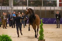 Truppa Valentina (ITA) - Eremo Del Castegno <br /> Reem Acra FEI World Cup Goteborg 2013<br /> © Dirk Caremans
