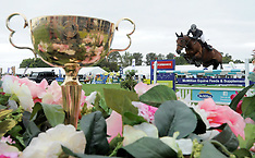 Hastings-Equestrian, Horse of the Year, Norwood Gold Cup