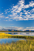 View of the Wrangell Mountains from the wetlands and tundra near Nebesna Road, Wrangell-St. Elias National Park Alaska
