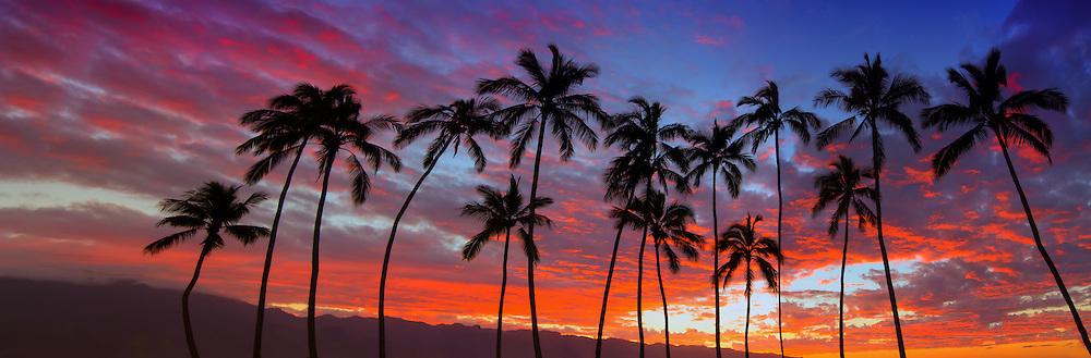 Colorful Hawaiian Sunset