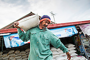 24 APRIL 2013 - SAMUT SONGKHRAM, SAMUT SONGKHRAM, THAILAND:    A worker carries bags of salt to a waiting truck. The 2013 salt harvest in Thailand and Cambodia has been impacted by unseasonably heavy rains. Normally, the salt fields are prepped for in December, January and February, when they're leveled and flooded with sea water. Salt is harvested from the fields from late February through May, as the water evaporates leaving salt behind. This year rains in December and January limited access to the fields and rain again in March and April has reduced the amount of salt available in the fields. Thai salt farmers are finishing the harvest as best they can, but the harvest in neighboring Cambodia ended 6 weeks early because of rain. Salt has traditionally been harvested in tidal basins along the coast southwest of Bangkok but industrial development in the area has reduced the amount of land available for commercial salt production and now salt is mainly harvested in a small part of Samut Songkhram province.   PHOTO BY JACK KURTZ