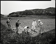Taking samples of Radioactive soil form  Katsuzo Shoiji's rice field Levels of more then 10  micro sieverts are still present more than 60 days after the  march 15 explosions and fire at  Daiichi Nuclear power plants 40km away.. Katsuzo Shoji's (75) family has worked   this land for  more then 6 generations Like the rest of the town's population  he is being forced to evacuate most likely to an apartment 20km away.  uncertain when he will be able to return he has been able to rent some land to continue his work  outside of the  heavily  contaminated village.  the  Fukushima Daiichi nuclear power plant, about 40km away.  Outside the 20km government exclusion zone, the village's mountainous topography  funneled radiation spewing from its crippled reactors trapping it there, poisoning crops , water and livestock.  he has  been told  he must  destroy his crops and  his six prized  Iitate beef cows must be killed.