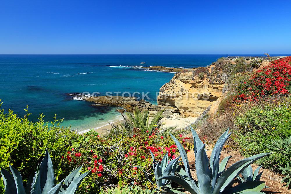 Laguna Beach California Coastline