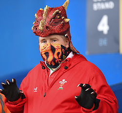 Wales Supporter<br /> Wales Women v South Africa Women<br /> Autumn International<br /> <br /> Photographer Mike Jones / Replay Images<br /> Cardiff Arms Park<br /> 10th November 2018<br /> <br /> World Copyright © 2018 Replay Images. All rights reserved. info@replayimages.co.uk - http://replayimages.co.uk