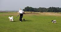 SANDWICH (GB) - Honden op de golfbaan. The Prince's Golf Club. COPYRIGHT KOEN SUYK