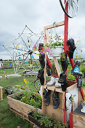Communal urban community garden at Tempelhof Airport now park in Berlin GErmany