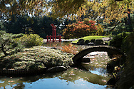 The Japanese Hill-and-Pond Garden at the Brooklyn Botanic Garden