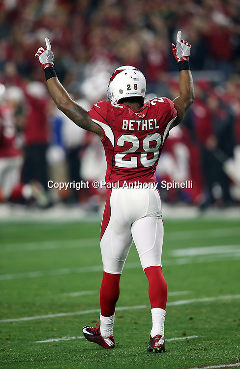Arizona Cardinals cornerback Justin Bethel (28) raises his arms in celebration after Arizona Cardinals cornerback Patrick Peterson (21) returns a second quarter for an apparent touchdown negated by a second quarter penalty during the NFL NFC Divisional round playoff football game against the Green Bay Packers on Saturday, Jan. 16, 2016 in Glendale, Ariz. The Cardinals won the game in overtime 26-20. (©Paul Anthony Spinelli)