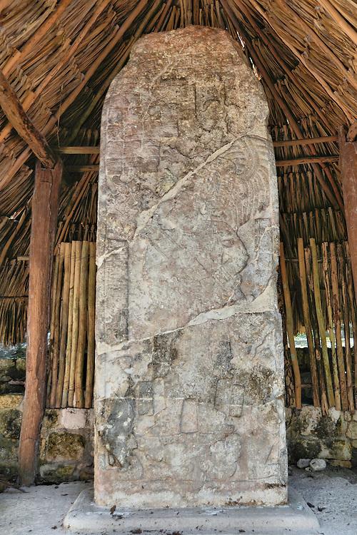 Stela 20 Of Ruler D At Mayan Ruins In Coba Mexico