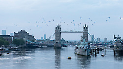 © Licensed to London News Pictures. 19/06/2016. London, UK. Fifty hot air balloons fly over Tower Bridge in central London at dawn in a Regatta raising funds and awareness for the Lord Mayorís Appeal and the City of London.  Photo credit : Stephen Chung/LNP