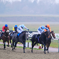 Lingfield 24th November