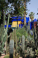 Cactuses growing in front of the cobalt coloured pavilion in the Majorelle Garden in Marrakech, Morocco