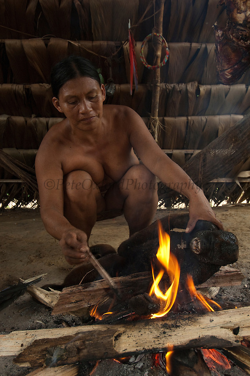 Huaorani Indian woman - Ware Baiwa cooking a woolly monkey. Gabaro Community. Yasuni National Park.<br /> Amazon rainforest, ECUADOR.  South America<br /> They singe the hair off on the fire, then gut it and cut it up for either boiling in a pot or smoking over the fire.<br /> This Indian tribe were basically uncontacted until 1956 when missionaries from the Summer Institute of Linguistics made contact with them. However there are still some groups from the tribe that remain uncontacted.  They are known as the Tagaeri. Traditionally these Indians were very hostile and killed many people who tried to enter into their territory. Their territory is in the Yasuni National Park which is now also being exploited for oil.