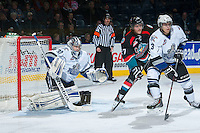 KELOWNA, CANADA - NOVEMBER 20:  Ryan Olsen #27 of the Kelowna Rockets looks for the pass in front of Patrik Polivka #33 of the Victoria Royals on November 20, 2013 at Prospera Place in Kelowna, British Columbia, Canada.   (Photo by Marissa Baecker/Shoot the Breeze)  ***  Local Caption  ***