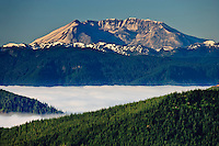 The caldera of Mount St Helens viewed from the Tahoma State Forest about thirty miles away in the Cascade Mountain Range of Washington state, USA