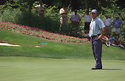 Jun 26, 2006; Gaylord MI; Chris DiMarco looks across the 6th green at his missed putt during the ING Par-3 Shootout at Treetops Resort in Gaylord Michigan.