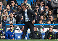 Football - 2016/2017 Premier League - Chelsea V Leicester.<br /> <br /> Chelsea Manager Antonio Conte points to where he wants his team to be at Stamford Bridge.<br /> <br /> COLORSPORT/DANIEL BEARHAM