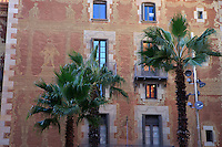 Palm trees growing beside a building in the Barri Gotic part of Barcelona, Spain