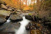 Neshobe River headwaters, Brandon Gap, Goshen, Vermont.