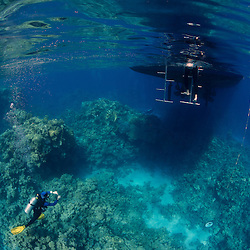 Dive Spot: Middle Reef