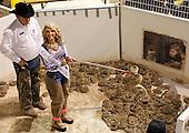 2012 Sweetwater Rattlesnake Roundup