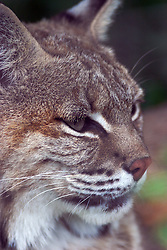 05 June 2005 <br />