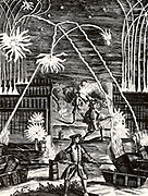 The uses of gunpowder including mortars, cannon, rockets and fireworks. From 'Magia Naturalis' by Johannes Baptista della Porta (Nuremberg, 1715). The first edition of this book appeared in Naples in 1558. Engraving.