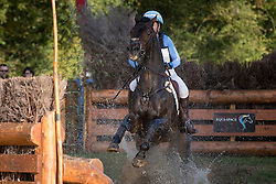Price Jonelle, NZL, Cooley Showtime<br /> World Championship Young Eventing Horses<br /> Mondial du Lion - Le Lion d'Angers 2016<br /> © Hippo Foto - Dirk Caremans<br /> 22/10/2016
