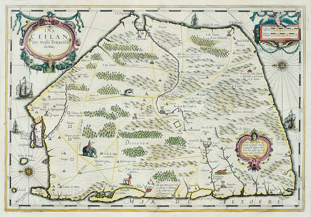 Map of Ceylon - Tenarifin<br />