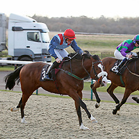 Roy's Legacy and Michael M J Murphy winning the 1.10 race