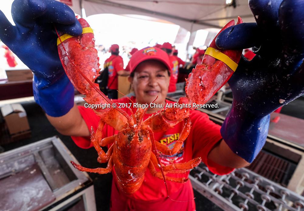 新华社照片,洛杉矶,2017年7月17日<br />     (国际)(5)第十九届年度洛杉矶港口龙虾节<br />     7月16日,一名厨师展示龙虾。<br />     在美国洛杉矶圣佩德罗,大批民众出席了号称世界上最大龙虾节&quot;第十九届年度洛杉矶港口龙虾节&quot;。<br />     新华社发(赵汉荣摄)<br /> A chef shows a lobster at the 19th Annual Port of Los Angeles Lobster Festival in San Pedro, California, the United States, Sunday, July 16, 2017. The world&rsquo;s largest lobster festival, which has been a Southern California tradition since 1999. The event features fresh Maine lobster, wine and draft beer, free entertainment, live music, shopping, and other culinary delights. (Xinhua/Zhao Hanrong)(Photo by Ringo Chiu)<br /> <br /> Usage Notes: This content is intended for editorial use only. For other uses, additional clearances may be required.