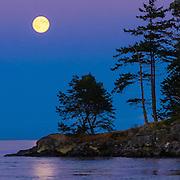 Blue Moon 2012