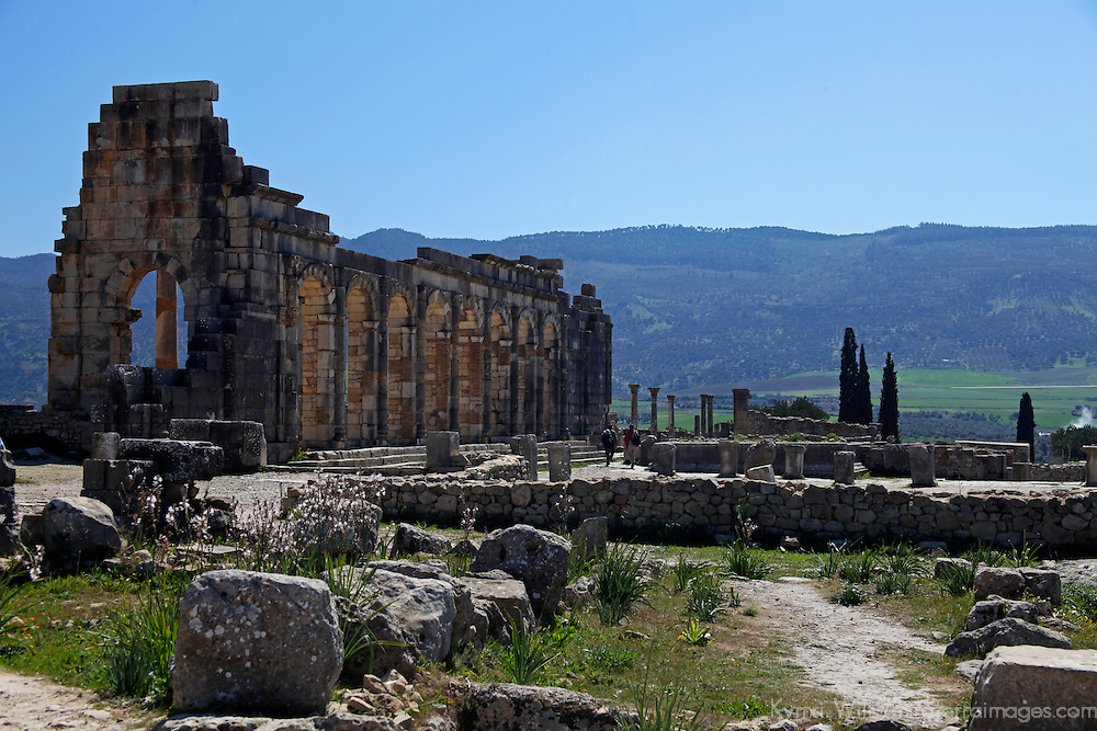 Africa, Morocco, Volubilis. Ancient Roman ruins at Volubilis, a UNESCO World Heritage Site.