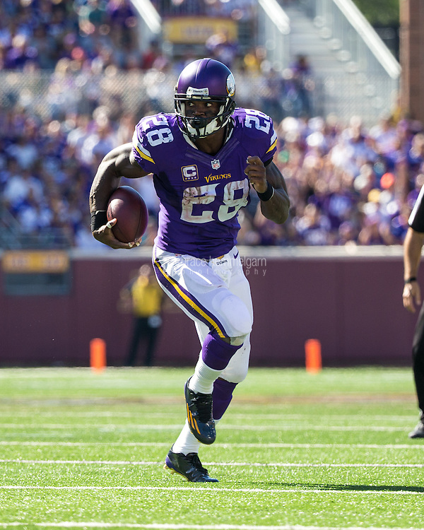 Sep 27, 2015; Minneapolis, MN, USA; Minnesota Vikings running back Adrian Peterson (28) carries the ball against the San Diego Chargers at TCF Bank Stadium. The Vikings defeated the Chargers 31-14. Mandatory Credit: Brace Hemmelgarn-USA TODAY Sports