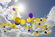 Yellow and purple balloons flying skywards. <br />
