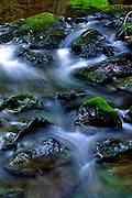Slow creek rapids, Muir National Forest, California