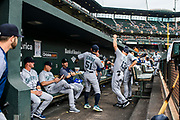 "Baltimore, Maryland - June 25, 2018: Ichiro Suzuki pumps up the Mariners dugout at Camden Yards before playing the Orioles Monday June 25, 2018. Right before the first pitch is thrown he disappears into the locker room.<br /> <br /> He does everything an active player does except play. His new position in management forbids him from being in the dugout during game play, so he soaks up as much time with the players before the first pitch. <br /> <br /> Seattle Mariners star Ichiro Suzuki goes through all the pre-game warm ups like any position player on the Seattle Mariners, before their game against the Baltimore Orioles at Camden Yard Monday June 25th  -- except his current position is ""Special Assistant to the Chairman,"" in the ball club's front office.<br /> He does everything an active player does except play. His new position in management forbids him from being in the dugout during game play, so he soaks up as much time with the players before the first pitch. <br /> <br /> CREDIT: Matt Roth for The New York Times<br /> Assignment ID: 30221475A"