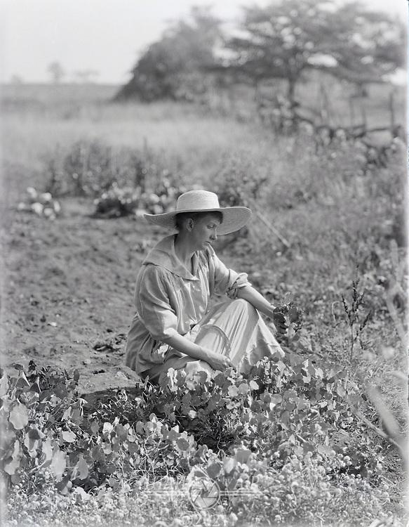 woman working in garden early 1900's