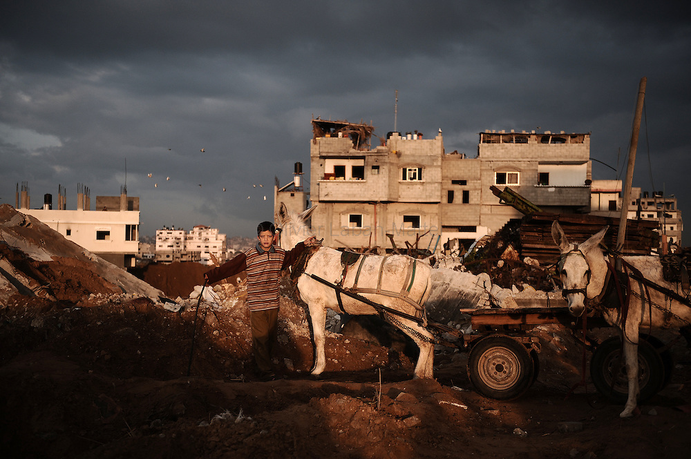 A Palestinian child drives his donkeys on the rubble of houses, on January 19, 2009, in Jabalia's Ezbet Abdrabbo neighborhood. A tenuous ceasefire held today in Gaza, where Palestinians dug out from the rubble and Hamas put on a show of defiance vowing to fight on after the Jewish state's deadliest war on the strip.