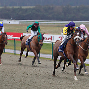 Lingfield 13th February