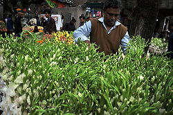 February 5, 2018 - Dhaka, Bangladesh - Bangladeshi people are busy with the trade of flower at Shahbag in Dhaka on Monday 05 February 2018. Thousands of people come this market to buy flowers. Shahbag is famous for flower market and It is the largest flower market in Bangladesh. (Credit Image: © Syed Mahamudur Rahman/NurPhoto via ZUMA Press)