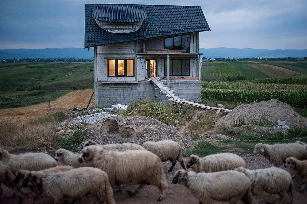 A flock of sheep pass a newly built house in the village of Cajvana. Many people in the village have made money abroad, mainly working in the construction industry and when they come back to Romania, many build large new homes.